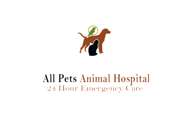 All Pets Animal Hospital 24 Hour Emergency Care Katy Tx